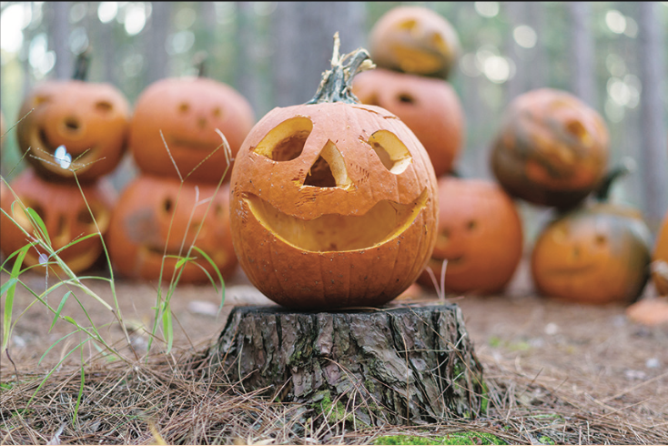 The Montello Lions Club is returning the Halloween spirit to the spooky forest west of town on Highway 23 when it hosts its Haunted Hayride this...
